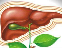 Чистка печени Аллохолом за 14 дней: отзывы медиков