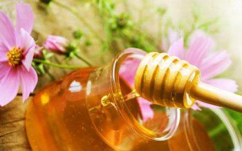 Тыква с медом для лечения печени рецепт